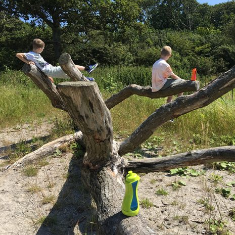 iiamo sport drinking bottle together with children in the tree